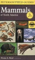 Peterson Field Guide To Mammals Of North America: Fourth Edition (peterson Field on sale