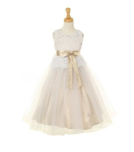 Champagne Stretched Lace Bodice Charmouse Flower Girl Dress Bridesmaid Party