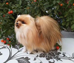 Simulation Dog Toy Polyethylene Furs Natural Colour Pomeranian Doll