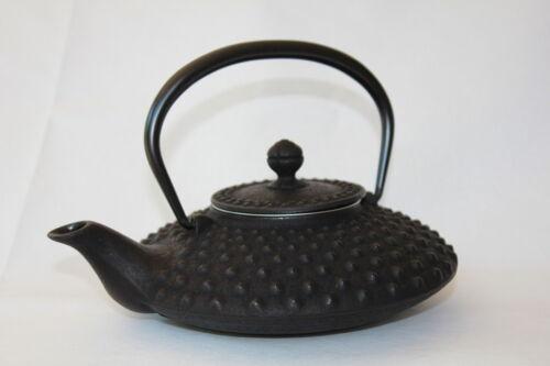 IWACHU Japonais Cast Iron théière Hira Arare 0.50 L