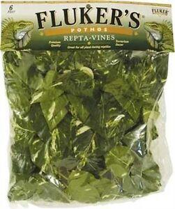 Fluker-039-S-Repta-Vines-Pothos-For-Reptiles-And-Amphibians