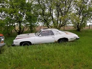 1975 Pontiac Le Mans Sport