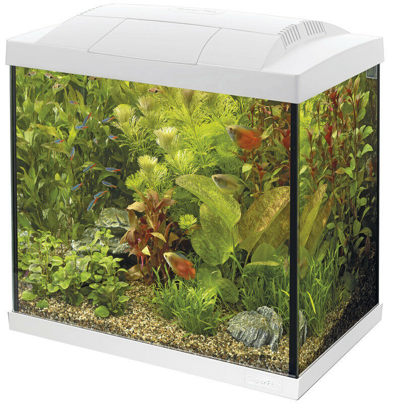 SF Tropical Set 50 Aquarium weiß inkl. Filter Filter Filter Heizer Wasseraufbereiter Kescher 250d20