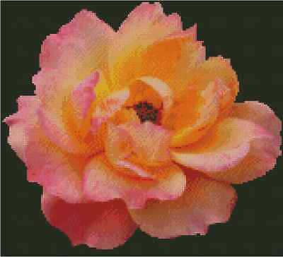 Flower Pink and Yellow Rose Counted Cross Stitch Chart No.20-106