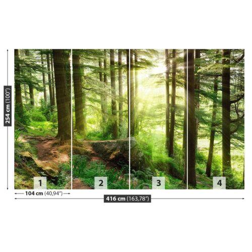 Tulup Fototapete Selbstklebend Einfach ablösbar Mehrfach klebbar Nebelwald