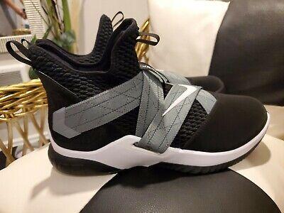Nike Zoom Lebron Soldier 12 Sfg Air