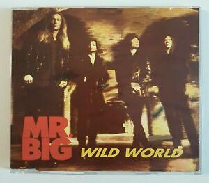 MR-BIG-WILD-WORLD-CAT-STEVENS-COVER-EP-MAXI-CD