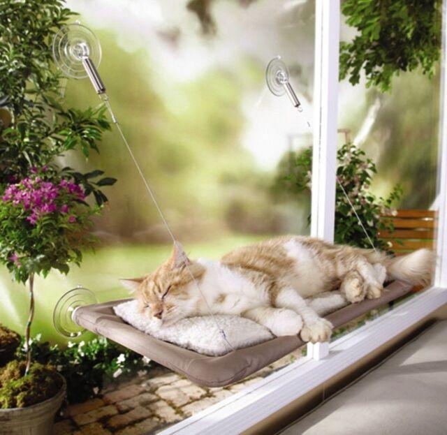Cat House Bed Window Furniture Sleeping Bad Window Perch Shelf Hammock Pet GIFT
