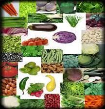 Hybrid Vegetable Seeds Combo Kit * for Kitchen/Terrace Gardening 15 Rare Items