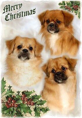 Tibetan Spaniel Dog A6 Christmas Card Design XTIB-14 by paws2print