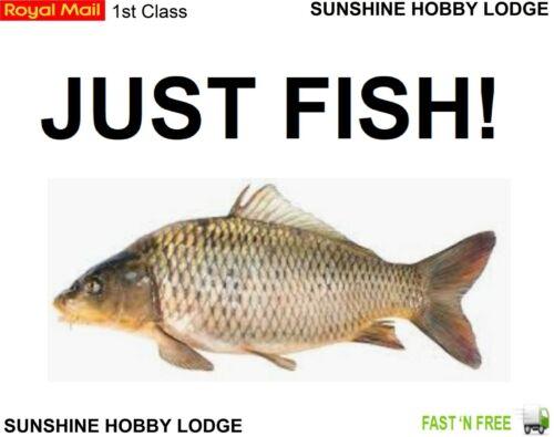 Carp Coarse Fishing Hooks Eyed Barbless Straight Shank Medium Gape Packs Of 200