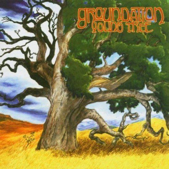Groundation - Young Tree ROCKAMOVYA CD NEU OVP