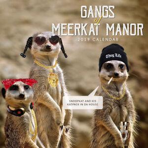 Gangs of Meerkat Manor 2019 Wall Calendar by Paper Pocket 30 x 30cm, (NEW)  9780994512055