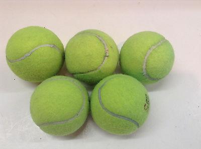 5 Dead Used Tennis Balls Dog Toys Fetch Catch Walkers Garage Corner Safety