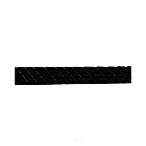 Serpentine Belt-GAS Continental OE 4040235