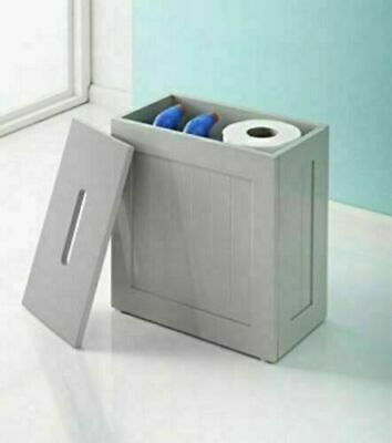 Toilet Cleaning Product Storage
