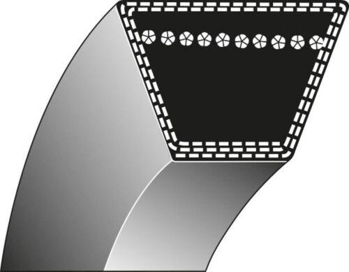 13 x 2896 Li Fahrantrieb Rasentraktoren AL-KO Keilriemen 514882