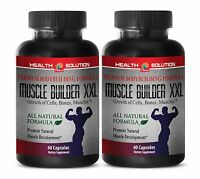 Aids In Fighting Fatigue - Muscle Builder Xxl 1500mg - Natural Colostrum 2b