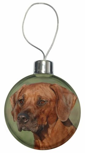 AD-RR1CB Rhodesian Ridgeback Dog Christmas Tree Bauble Decoration Gift