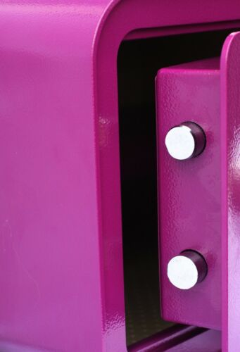 Basi mySafe 350 Elektronik-Möbel-Tresor mit Fingerprint 25 x 35 x 28 cm beere