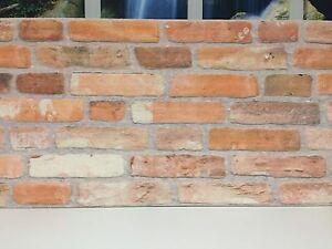 Wandverkleidung steinoptik styroporpaneele kunststein verblendstein steinwand ebay - Wandverkleidung steinoptik ...