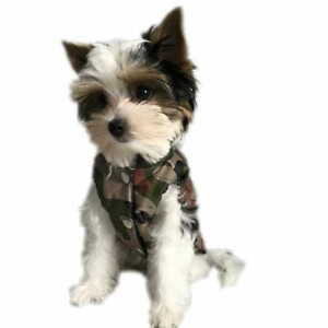 Smoro Pet Cat Dog Sweater,Warm Dog Jumpers Cat Clothes,Fleece Pet Coat for Puppy Dog