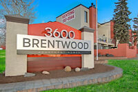 Newly renovated & pet friendly apartments. $500 OFF MOVE IN Calgary Alberta Preview