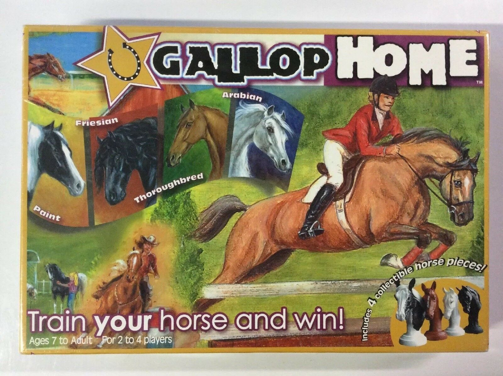 Gallop Home Collectible Horse Training Game NEW