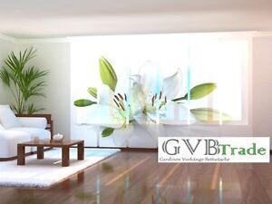 fotogardinen gardinen lily schiebevorhang. Black Bedroom Furniture Sets. Home Design Ideas