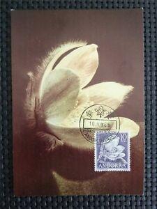 DéSintéRessé Andorre Mk 1966 Flore Fleurs Flowers Maximum Carte Carte Maximum Card Mc Cm C4905-afficher Le Titre D'origine