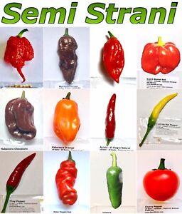 120 Seeds HOT CHILI PEPPER Coll 2: CAROLINA REAPER, NAGA ...