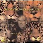 David Garfield - I Am the Cat, Man (2005)