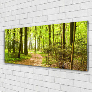 Wandbilder Glasbilder Druck auf Glas 125x50 Wald Natur
