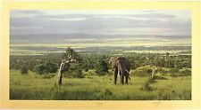 "ANTHONY GIBBS ""Into the Rift"" elephant africa LE SIGNED SIZE:52cm x 90cm NEW"