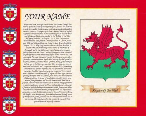 """HERITAGE COAT OF ARMS WALES /& YOUR SURNAME HISTORY PRINT 10/"""" x 8/"""" /& FREE GIFT"""