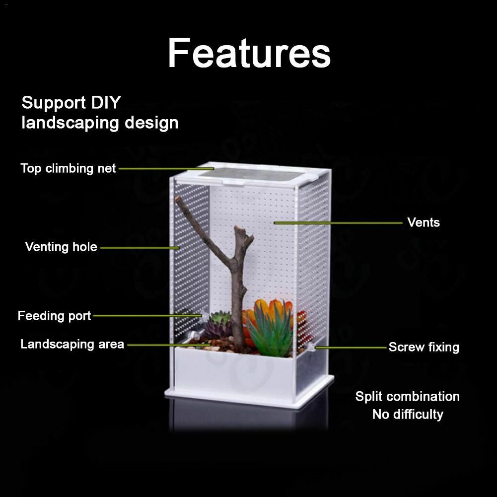 Transparent Acrylic Reptiles Feeding Insect Box Home Insects Breeding Cage  Tool | eBay