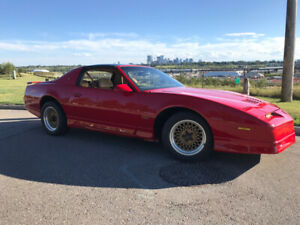 1988 1/2 GTA NOTCHBACK TRANS AM 1 of 50