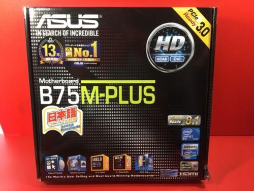 New ASUSTeK Intel B75 equipped motherboard LGA 1155 correspondence B75M-PLUS F//S
