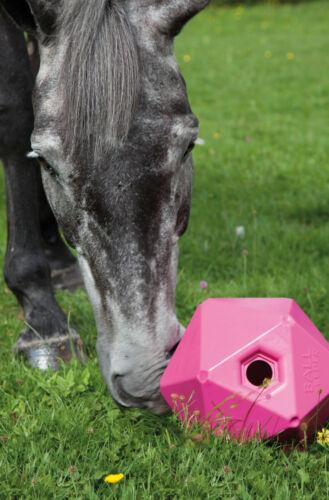 NEW Shires Stable Field Toy Ball Feeder Boredom Breaker Anti Stress Horse Pony