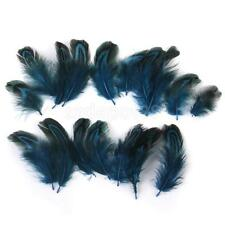 50x Pheasant Feathers for Fly Tying Craft Mask Millinery Hat 3-6cm /1-2 Inch