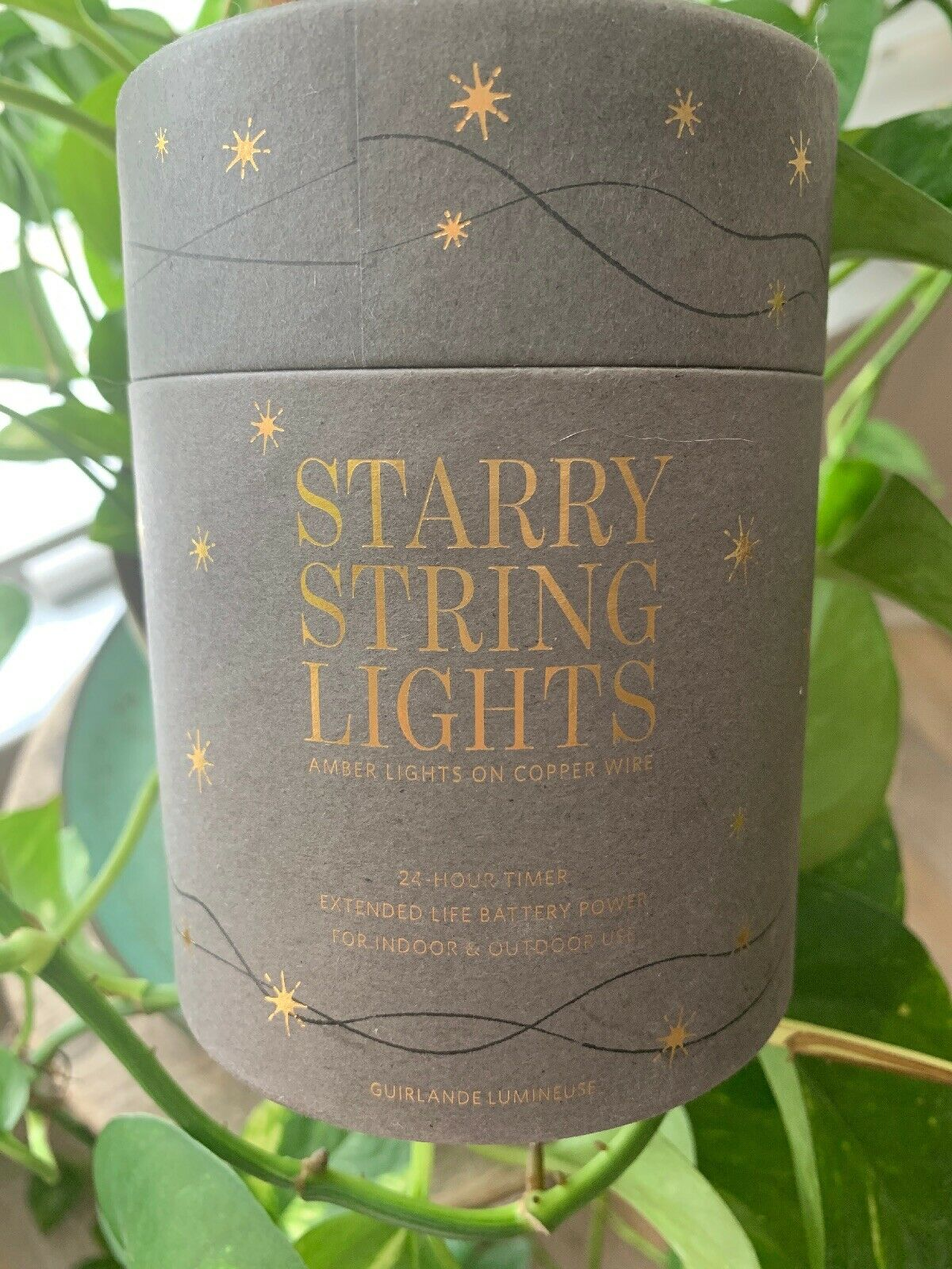 Restoration Hardware Starry String