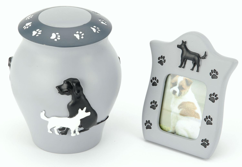Shildon Chien Animal De De Animal Compagnie crematiion Urne de cendres avec GRATUIT 55ae48