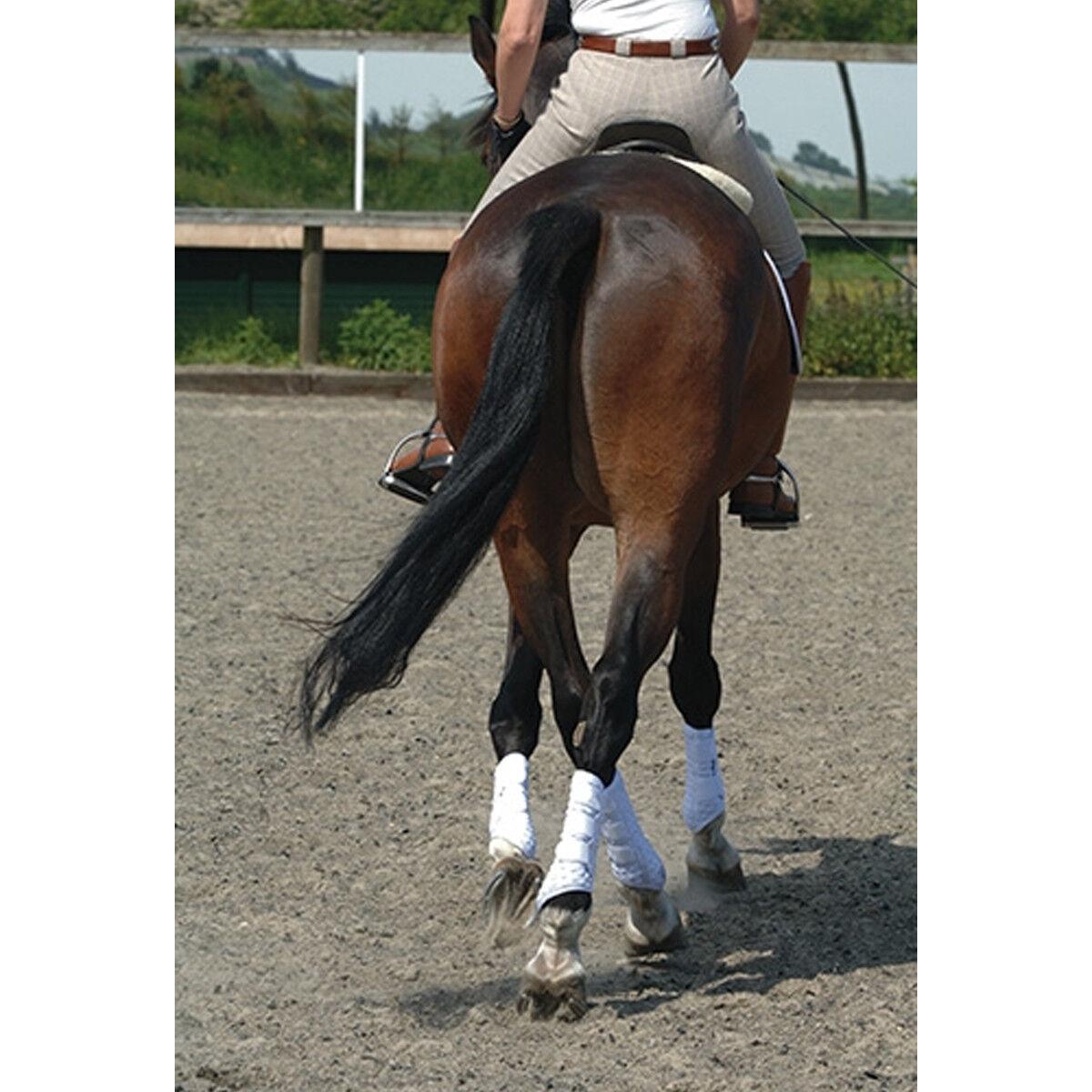 Equilibrium Stretch and Flex Flatwork Wrap