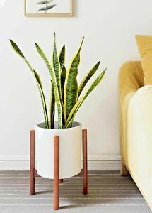 Mid Century Modern Plant Stand Wood Pot