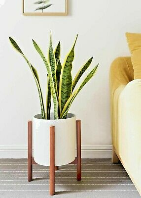 Wood Flower Stand Mid Century Wood Flower Pot Holder Display Stand Potted Rack Up to 10 inch Planter for Indoor Outdoor Modern Home Decor m zimoon Plant Stand Planter and Pot Not Included