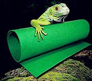 Reptile Carpet Terrarium Liner Bearded Dragon Accessories Reptiles