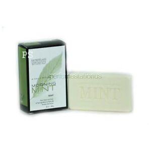 2x-Archipelago-Botanicals-Morning-Mint-Soap-28507-5-0-oz-148-G-Brand-New
