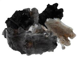 Assorted Natural color Rabbit Pelt Not Dyed Lot of 10 pelts Grade 5 188-07N