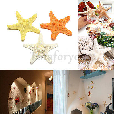 Hanging Starfish Tropical Ornament Beach Ocean Sea Shell Home Wall Wedding Decor