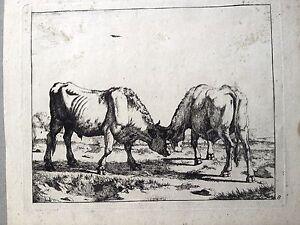 EL-PASTOREO-CENCERRO-aguafuerte-original-XVII-siglo-MARCUS-DE-Holanda-BYE